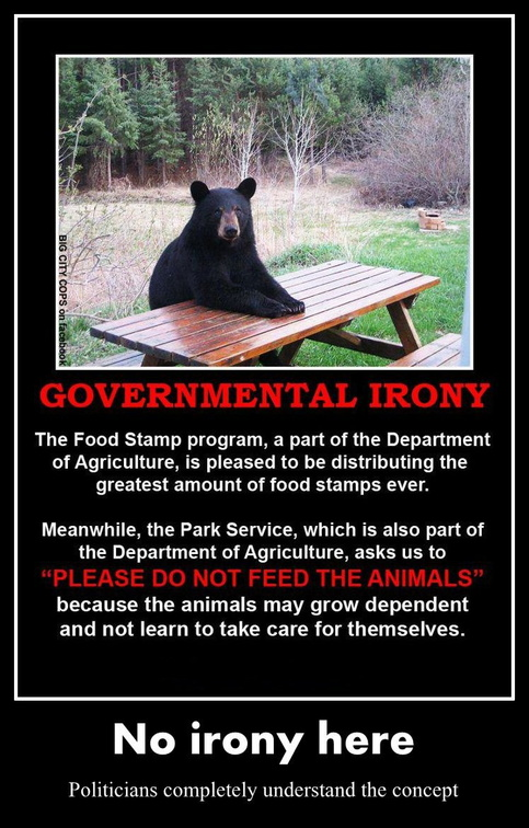 Government Irony